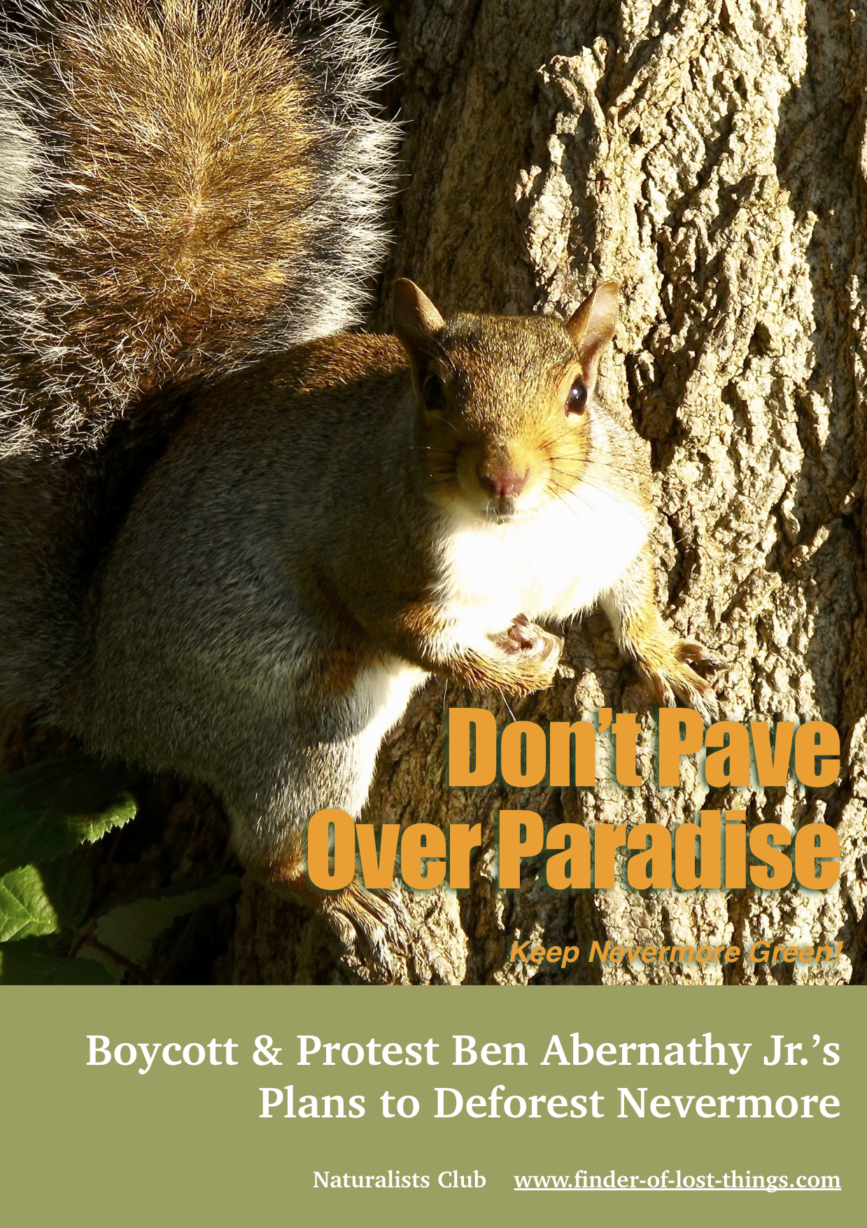 Squirrel don't pave over paradise jpg